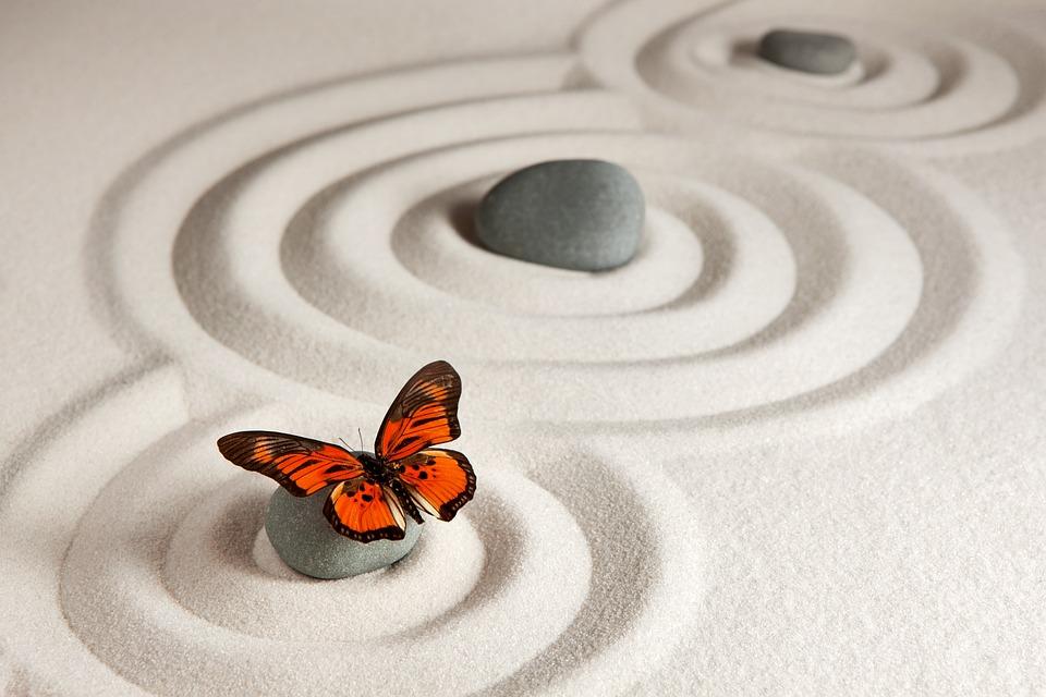 Zen, Meditatie, Yoga, Spiritualiteit, Vlinder, Natuur