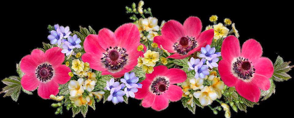 Kwiaty Układania Kwiatów Dekoracja - Darmowy obraz na Pixabay