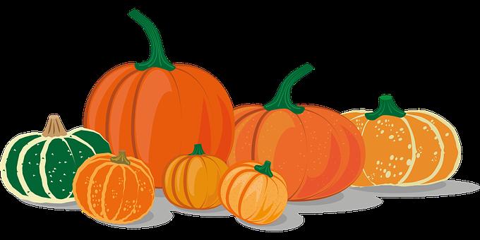 Pumpkins, Squash, Icon, Pumpkin Icon