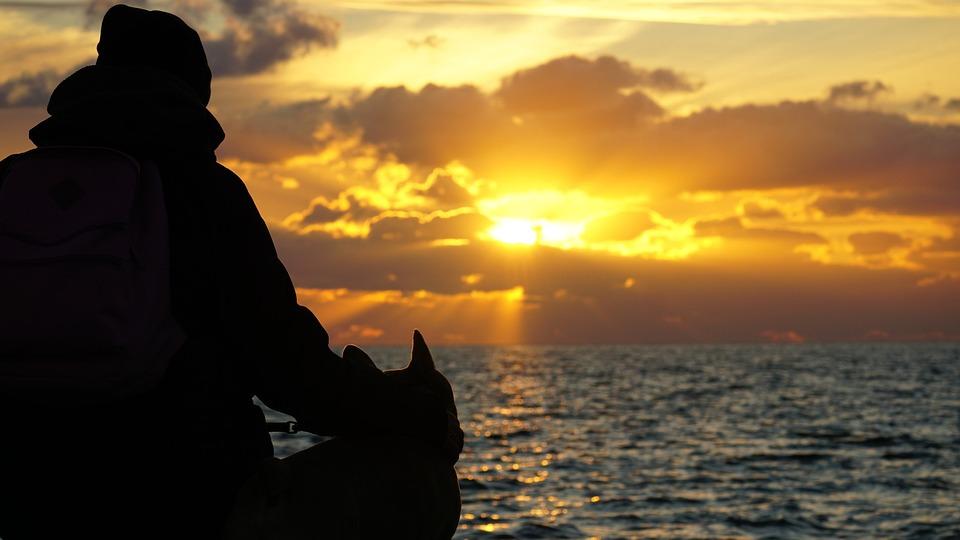Silhouet, Vrouw, Mens En Dier, Zonsondergang