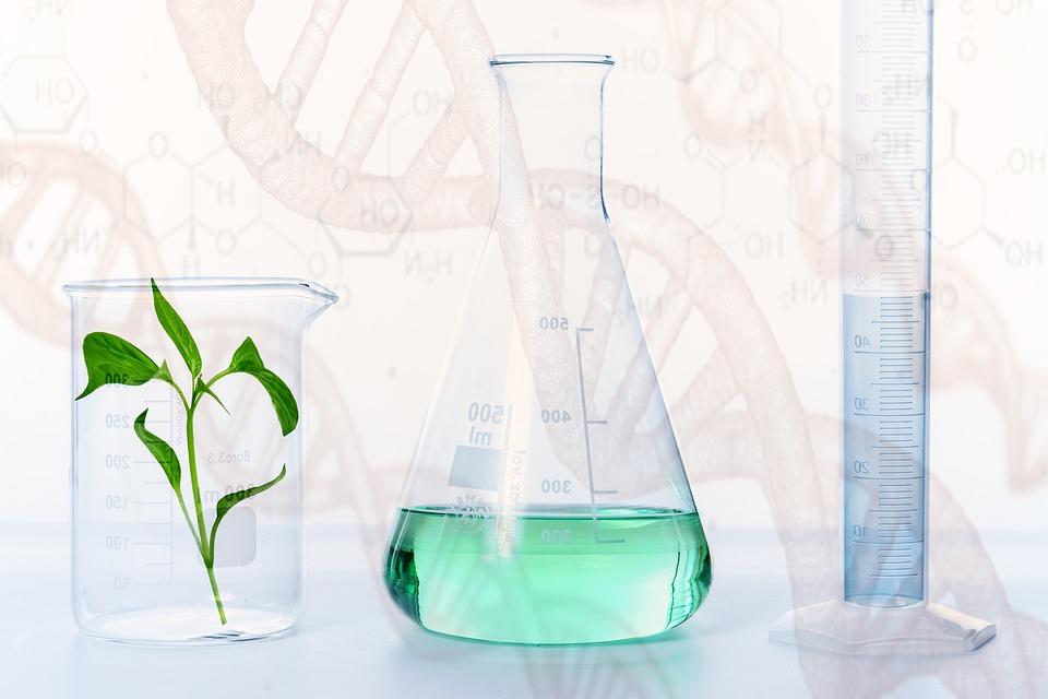 Eksperyment, Badania Naukowe, Laboratorium, Nauki