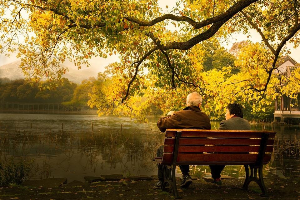 湖畔, カップル, ベンチ, 老夫婦, 木製のベンチ, 公園, 湖, 池, 木, 高齢者, 高齢者のカップル