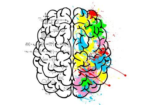 Brain, Left, Logic, Science, Mathematics