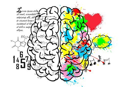 Brain, Left, Logic, Language, Science