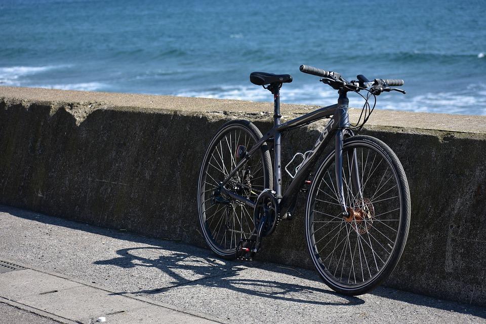 bet on female cyclo-cross