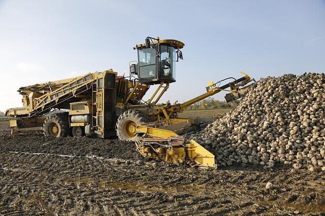 Excavator Field Agriculture