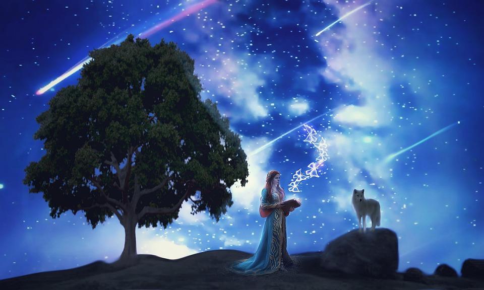 女性, ツリー, オオカミ, 本, 読書, 空, 流星群