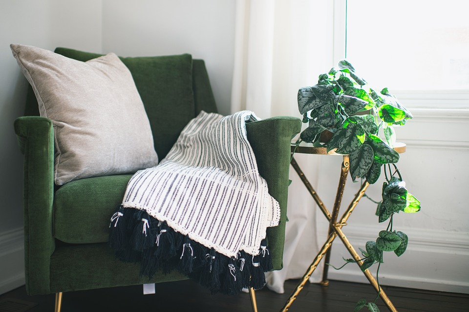 Chair, Home, Room, Plant, Ivy, Interior, Table, Blanket