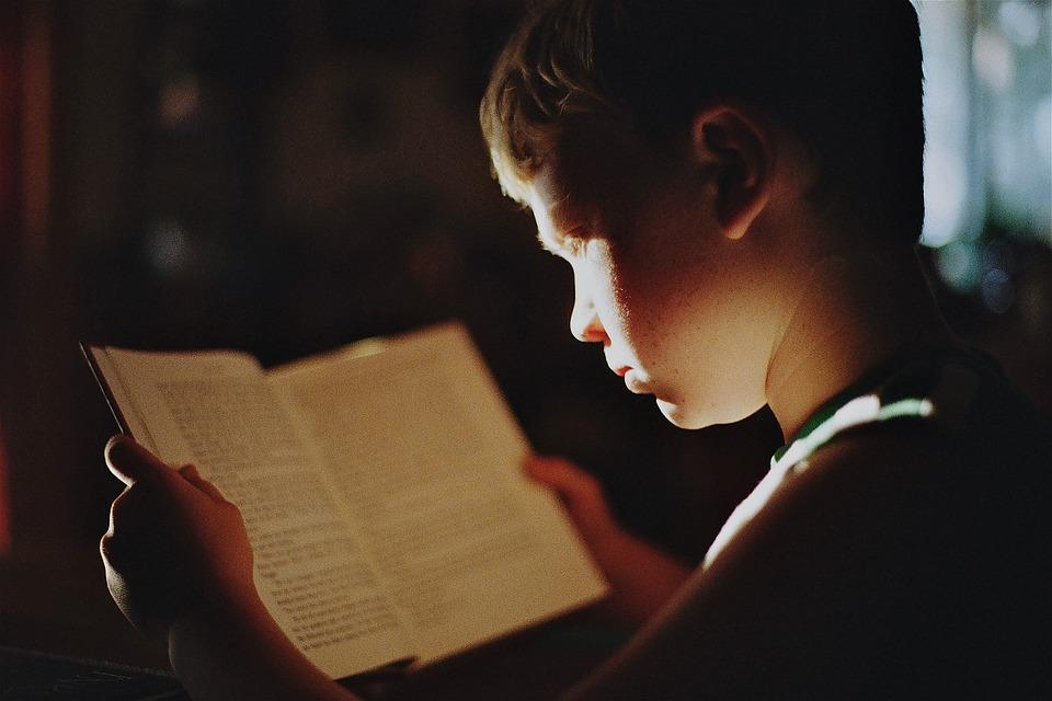 少年, 本, 読書, 文学, 読み取り, 教育, 研究, 勉強, 知識, フォーカス, 学生, 子ども, 子