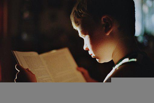 少年, 読書, 本, 文学, 教育, 読み取り, 研究, 勉強, 知識