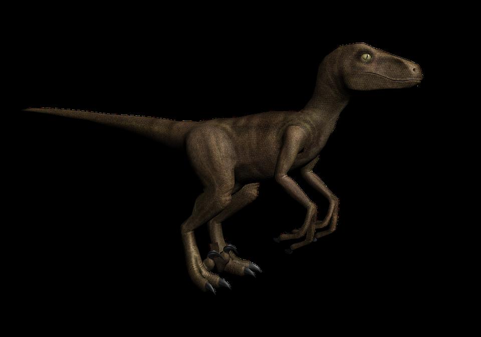 Dinosaurio Raptor Criatura Imagen Gratis En Pixabay Vectores e ilustraciones de stock sin royalties de dinosaurio reptil. dinosaurio raptor criatura imagen