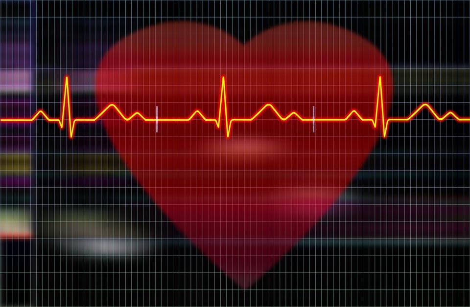 Профессия кардиолог: история, описание, обязанности, уровень заработка в России и в мире