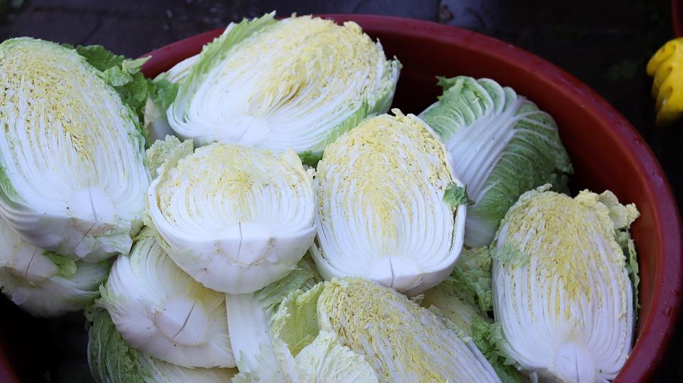 白菜, キムジャン, 韓国, 韓国の人気, 韓国料理, 白菜キムチ, キムチ, キムジャンキムチ, 田舎の食卓