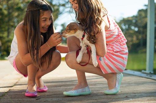 Girls, Dog, Playing, Pet, Leash, Puppy