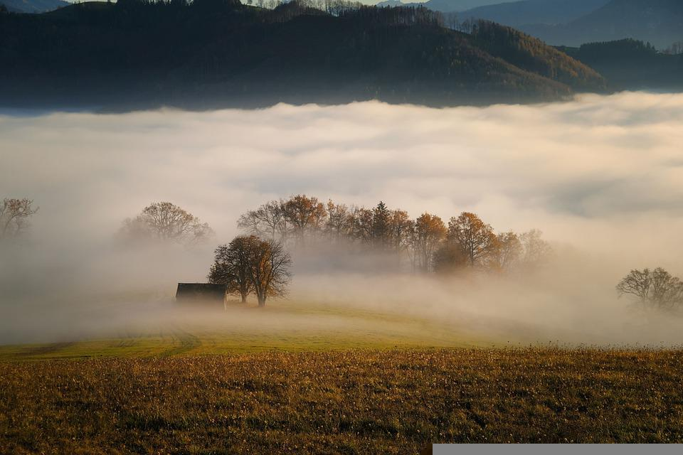 Drzewa, Mgła, Pole, Łąka, Las, Chata, Jesień, Natura