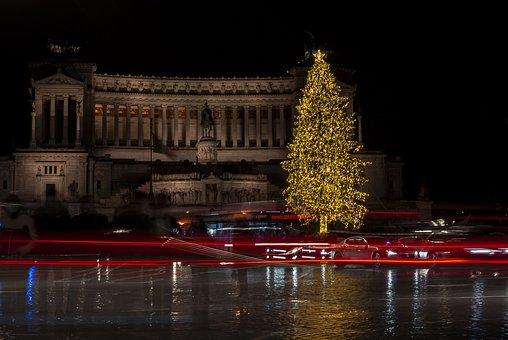 Christmas Tree, Building, Urban, City