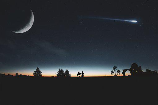 Mond, Drei Könige, Wald, Silhouette