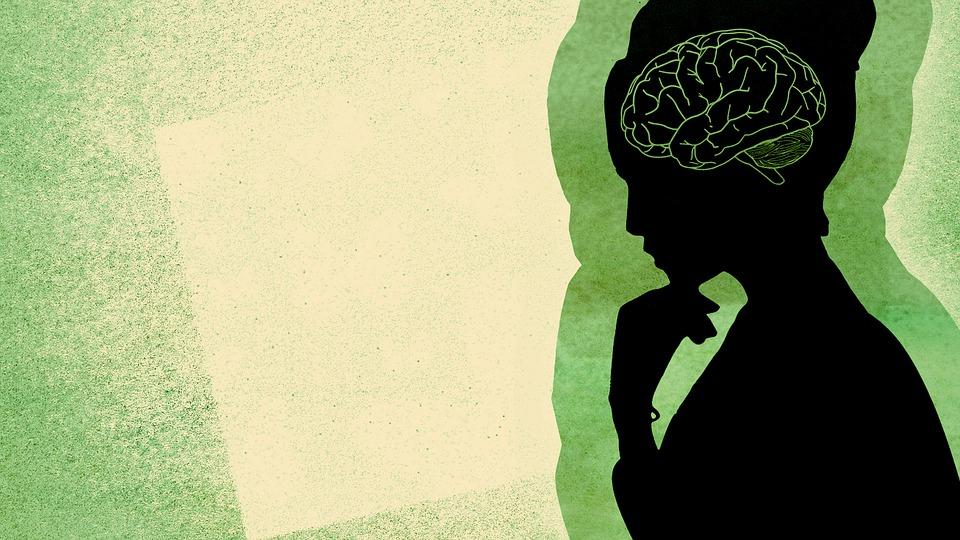 Brain, Woman, Profile, Mindset, Person, Human