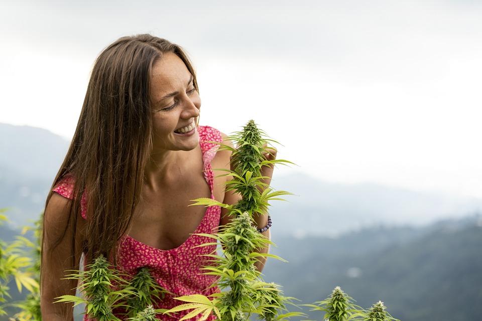 Vrouw, Glimlach, Marihuana, Hennep, Cannabis
