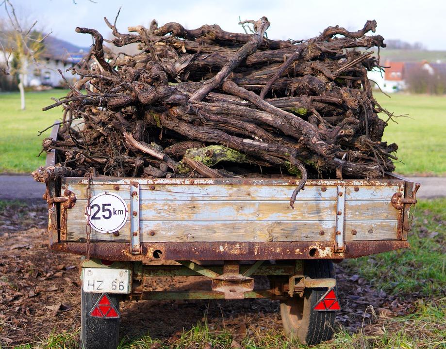 Remorque, Bois De Vigne, Charge, Bois, Firewoods