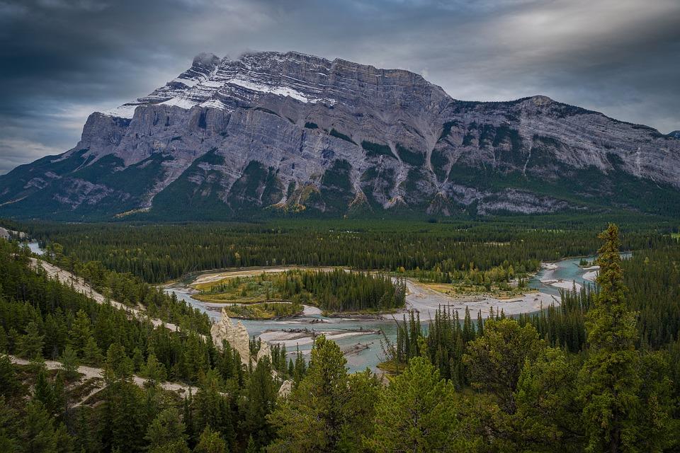 Montañas, Río, Banff, Árboles, Forestales, Coníferas