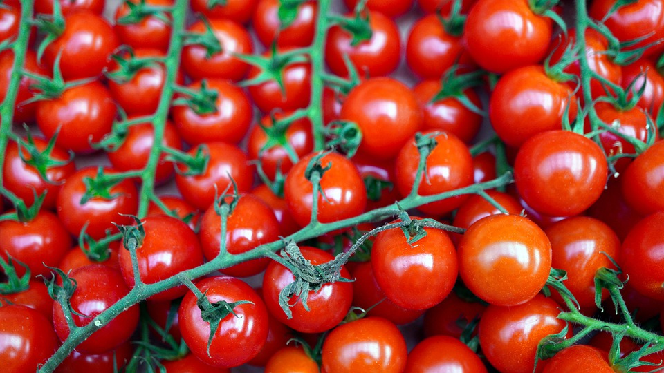 Tomatoes, Red, Ripe, Cherry Tomatoes, Fresh, Vegetables