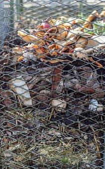Compost, Grid, Garden Waste