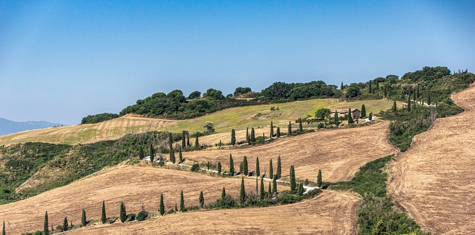Collina, Campi, Val D'Orcia, Azienda Agricola, Terra