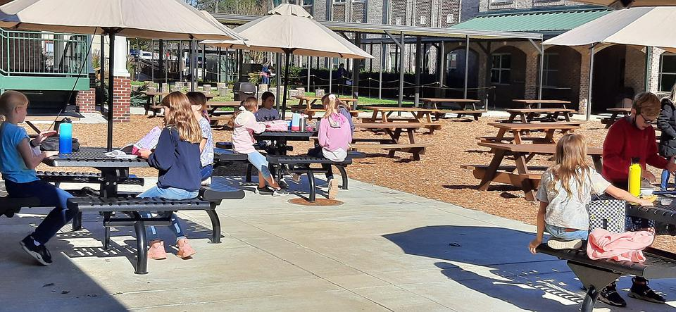 School Lunch, Outdoor Dining, Picnic