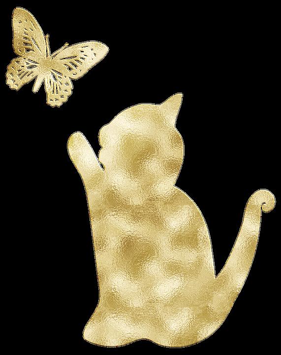 ゴールド箔 猫 蝶 Pixabayの無料画像