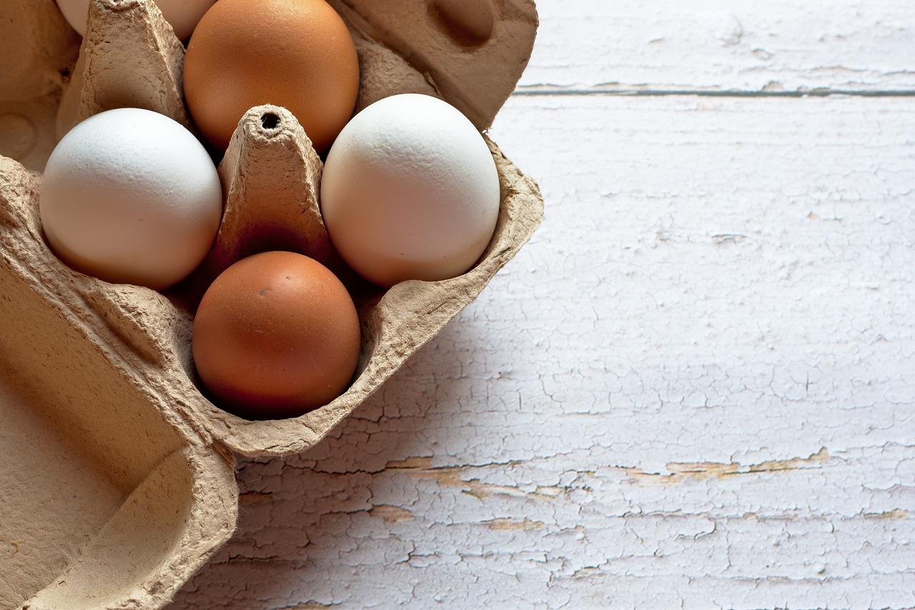 Food Chicken Eggs Egg Tray