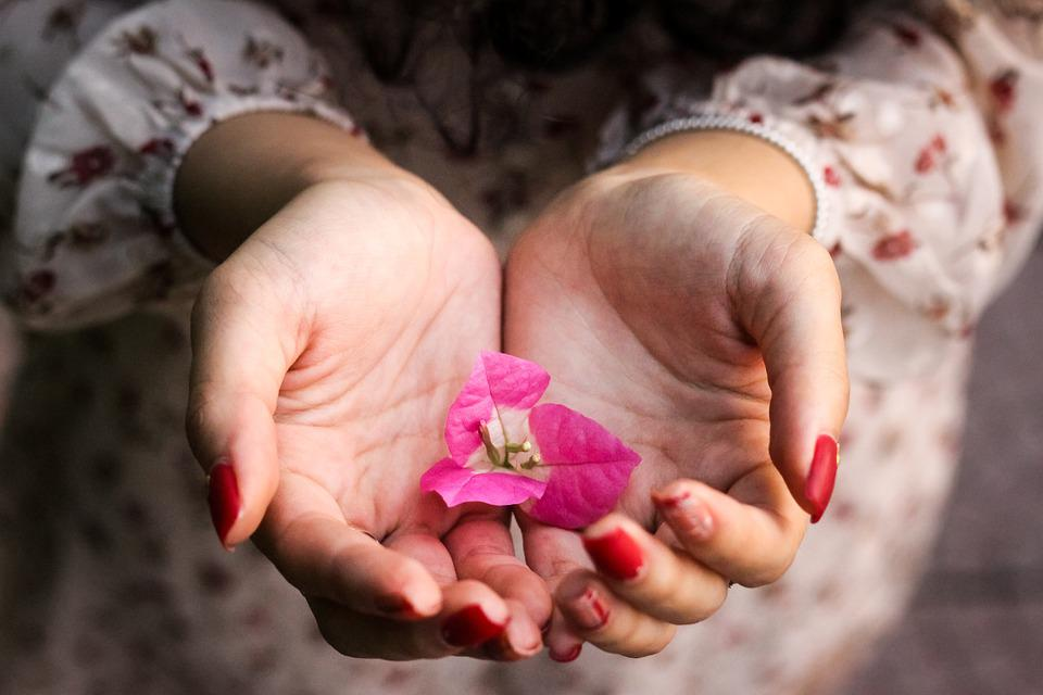 Hands, Girl, Flowers, Palms, Open Hands, Give, Receive