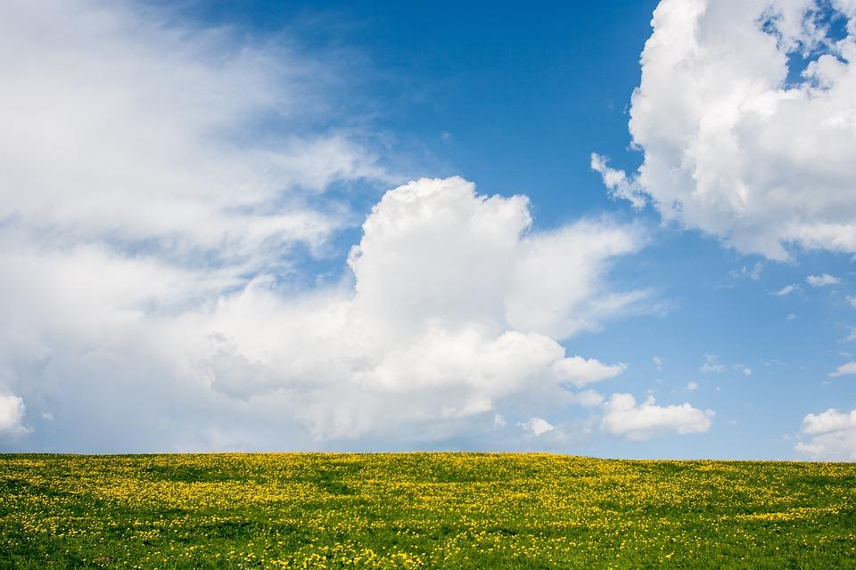 Красивые фото Field-6109500_960_720