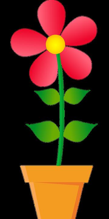egy virág clipart