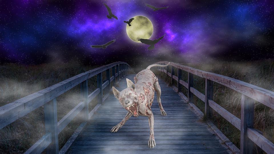 Werewolf, Moon, Bridge, Mysterious, Composing, Night