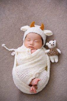 Newborn, Baby, Portrait, Sleeping