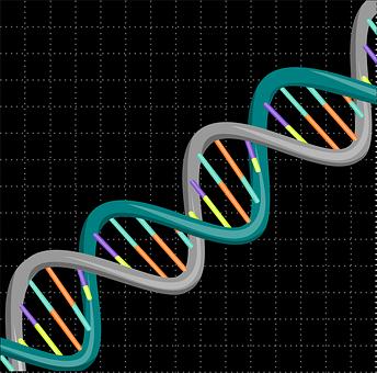 Dna, Genetic, Science, Biology, Medical