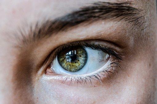 目の写真|KEN'S BUSINESS|ケンズビジネス|職場問題の解決サイト