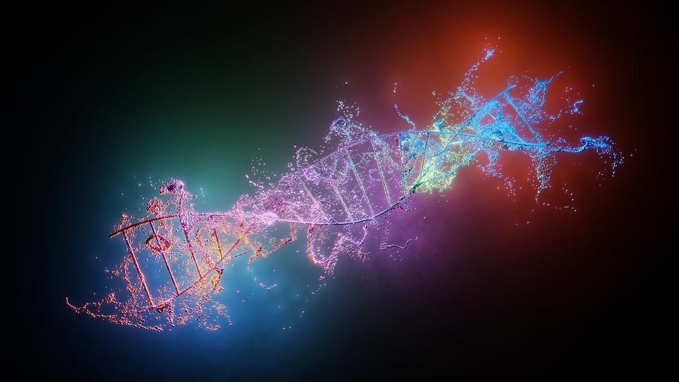 Спираль, Днк, Наука, Генетика, Научные Исследования
