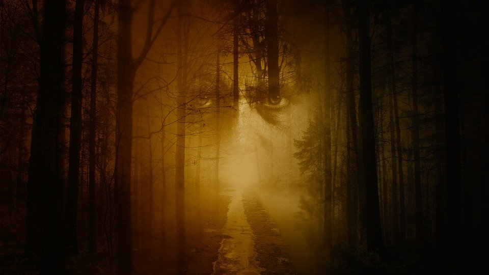 Face, Ghost, Forest, Mystical, Mysterious, Spirit