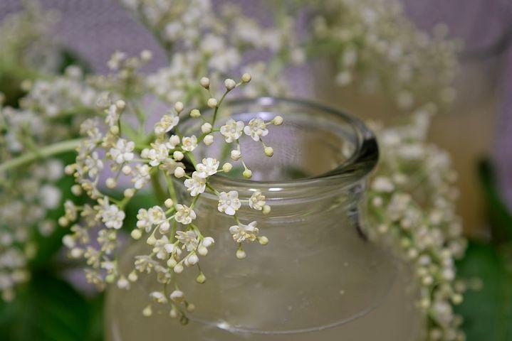 Elderflower, Elderflower Cordial, Glass