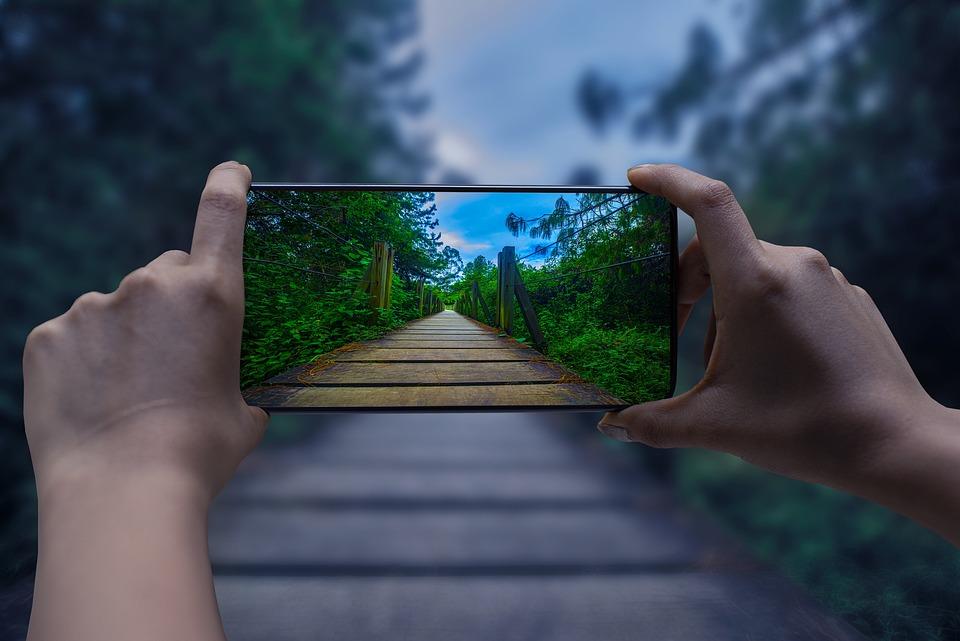 Smartphone, Camera, Landscape, Nature, Boardwalk