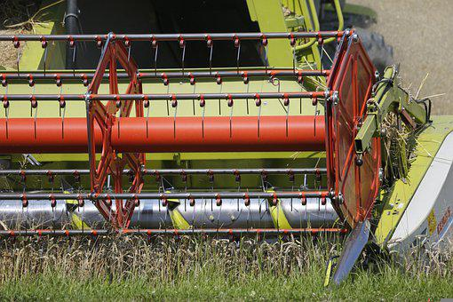 На Кубани собрали рекордный урожай зерна - 12,38 млн тонн