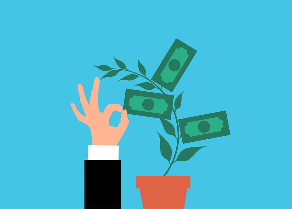 お金, 植物, 投資, 現金, 木, 仕事, 収集, 成長, 利益, 紙幣, スタック, コレクション, ドル