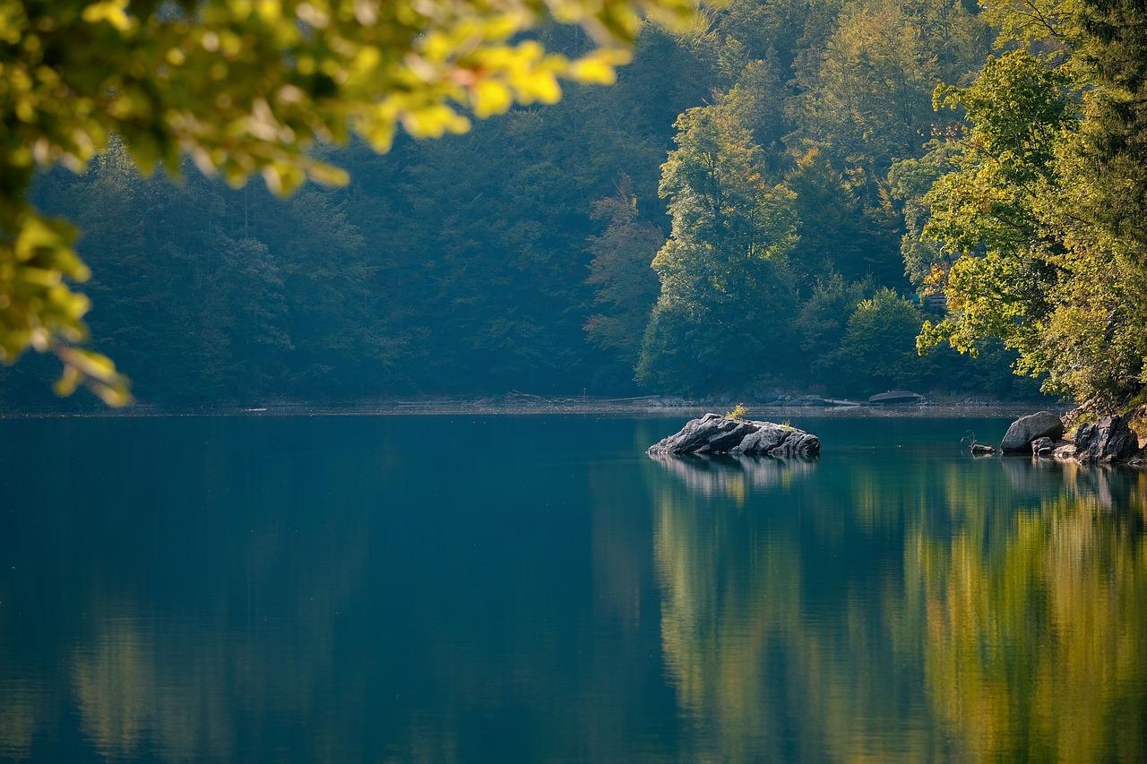 lake, rocks, forest #6641880 w salonie