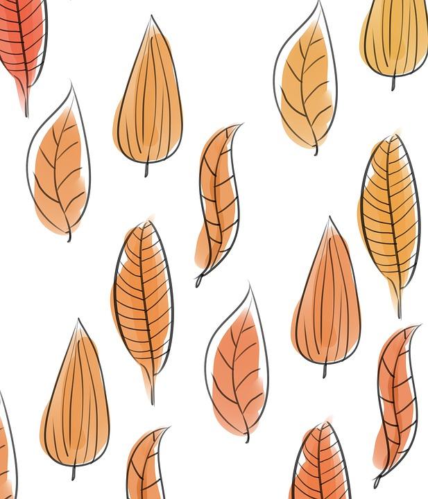 Feuilles, Feuillage, Les Plantes, Automne, Arbre